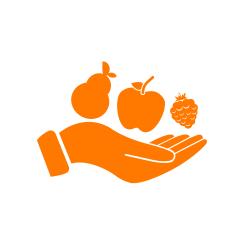 illustration d'une main portant des fruits